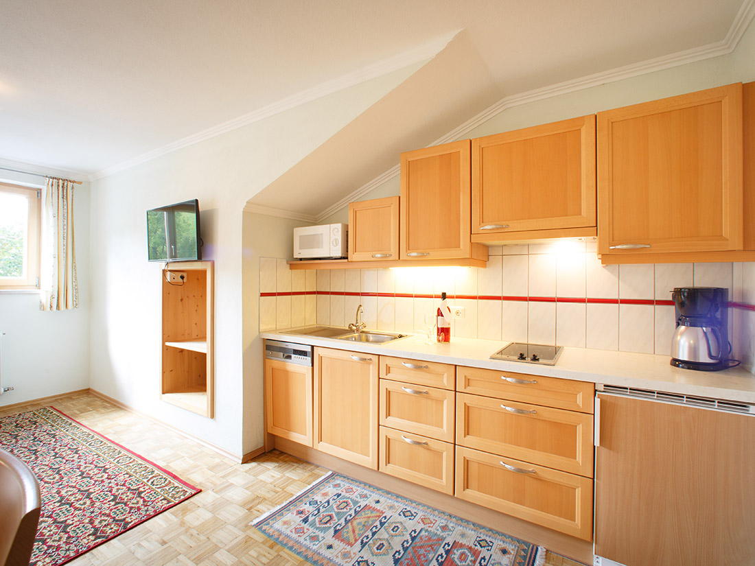appartement-dachstein-pension-schererhof_01.jpg